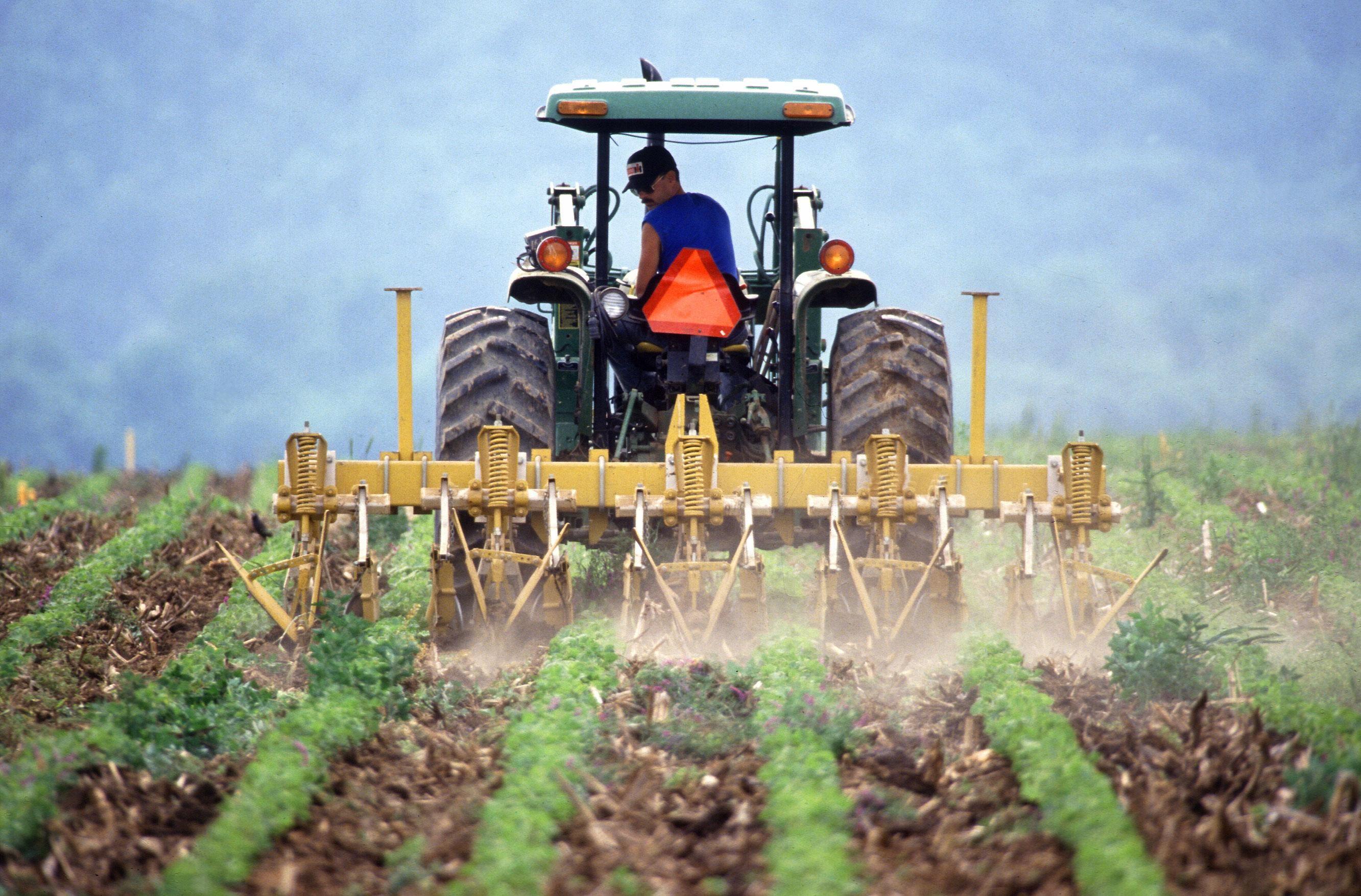 Земеделските производители подават три декларации до края на април