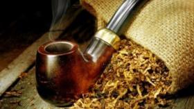 Увеличават се продажбите на тютюн за лула