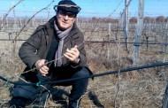 Вино на старозагорец взе злато в Германия