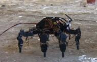 Български студенти готвят робот за спасителни операции