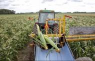 Компенсират стопани за пропаднала реколта