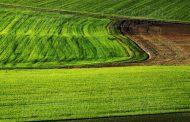 С 14,1% по-висока цена на земеделската земя за година в Старозагорско