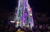 Коледната елха на Гълъбово грейна