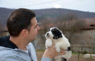 Диян Димитров очаква каракачански кученца