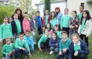 """Хималайски кедър засадиха в двора на ОУ """"Кирил Христов"""""""