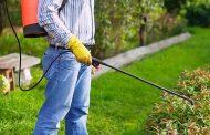 Пръскат тревни площи и водни обекти срещу комари