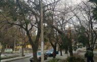 Без сериозни щети след бурния вятър и снеговалеж в Стара Загора