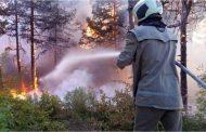 На работни срещи припомниха причините за възникване на горски пожари и правилата за безопасност