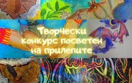 Организират творчески конкурс, посветен на прилепите