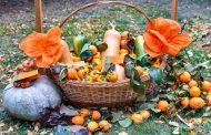 За празника на райската ябълка организират виртуален конкурс