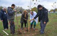 250 дръвчета засадиха в Тракийския университет в Стара Загора