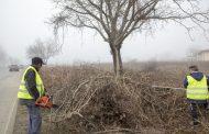 Разчистват пътя Стара Загора-Богомилово от дървета и храсти