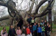 """Ученици се включиха в инициативата """"Заедно да почистим Стара Загора"""""""