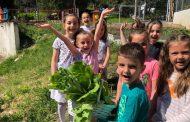 """""""Вкусна градинка"""" сътвориха деца и родители в Стара Загора"""