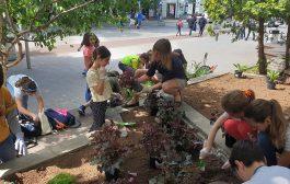 Четвъртокласници засадиха 150 цветни стръка в центъра на Стара Загора