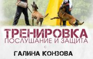 Атрактивна тренировка за кучета събира стопани и зрители край езерото на Старозагорските бани