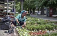 25 хиляди нови цветя ще красят Стара Загора